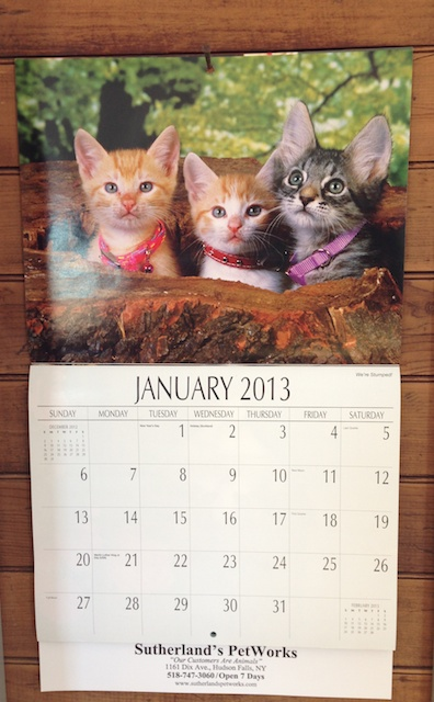 The incredibly sappy kitten calender in my studio